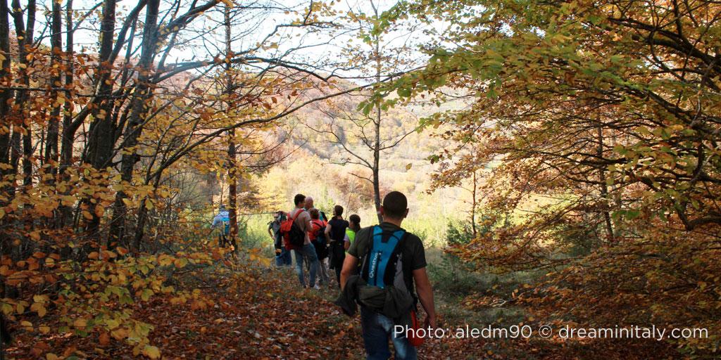Escursione nel bosco di Collemeluccio
